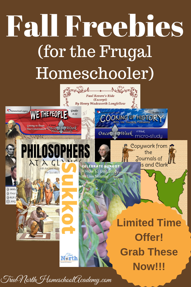 Are you looking for FREEBIES! Check out this great group of fall freebies today! #homeschool #freebies #fall #TrueNorthHomeschoolAcademy