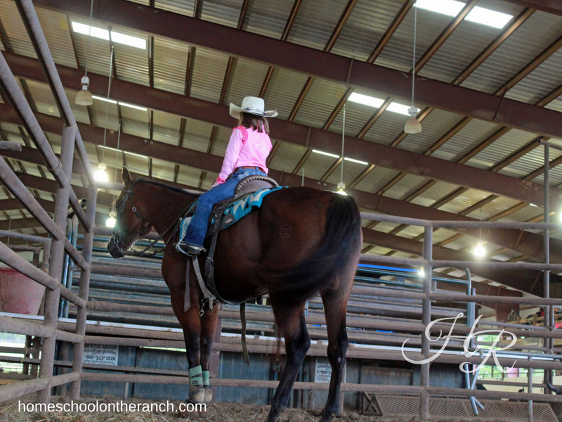 Girl sitting on horse in an arena while using rodeo as a homeschool elective