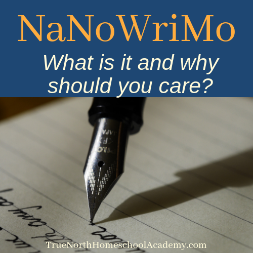 What in the World is NaNoWriMo and Why Should You Care?