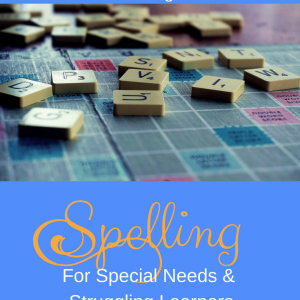 Reading Phonics Spelling