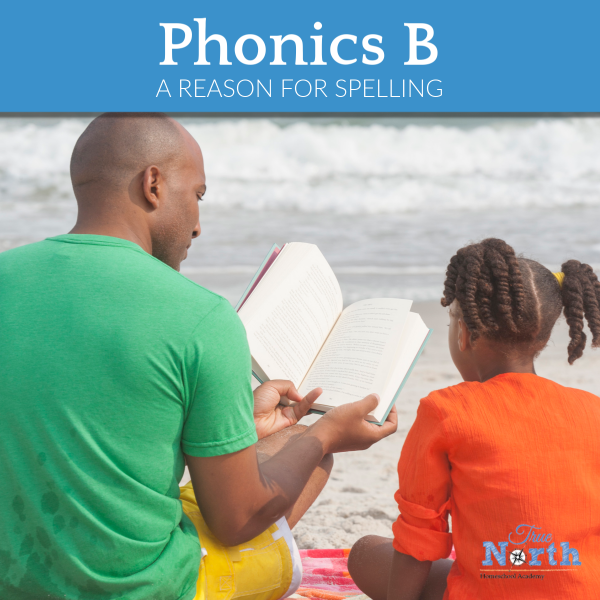 This approach to reading and phonics gives a solid foundation while also using proven methods for students with dyslexia and other reading difficulties.