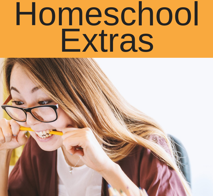 The Value of Homeschool Extras