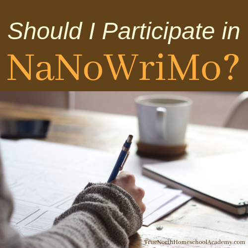 Should I participate in NaNoWriMo?