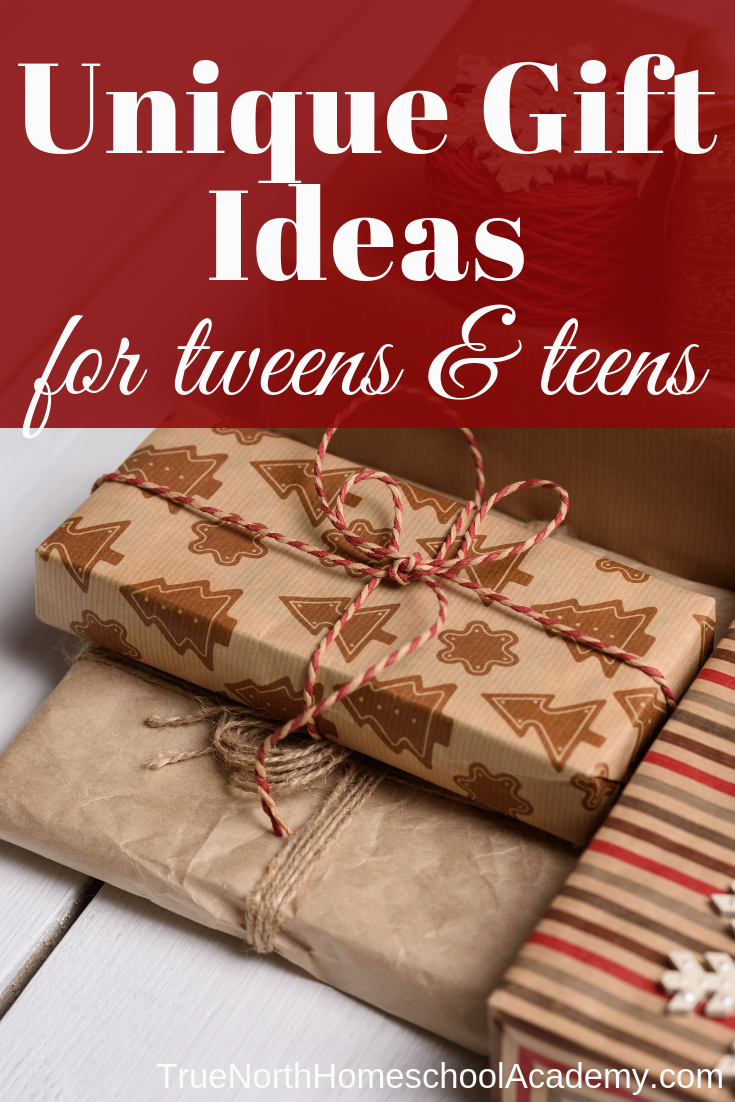 Are you looking for a unique gift for your tween or teen? Check out these great ideas from True North Homeschool Academy! #Christmas #homeschooling #TrueNorthHomeschoolAcademy