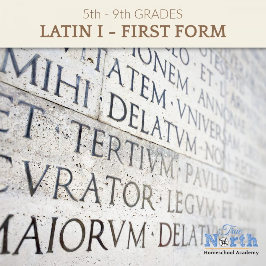 Latin Language classes for middle school and high school