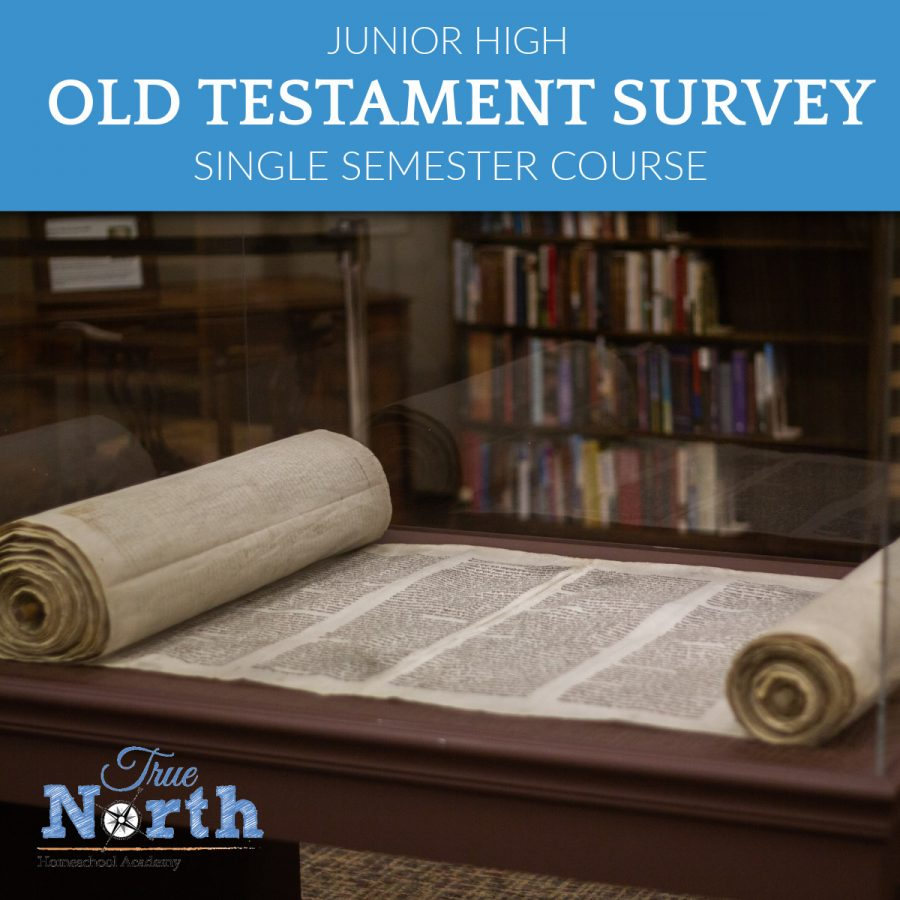 TNHA Product Image OLD TESTAMENT Single Semester Class