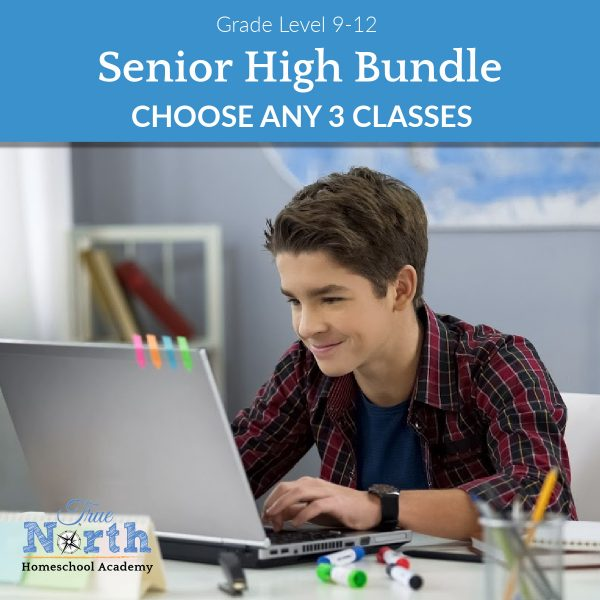 HIgh school student enjoys his online classes with True North Homeschool Academy Teachers and students.