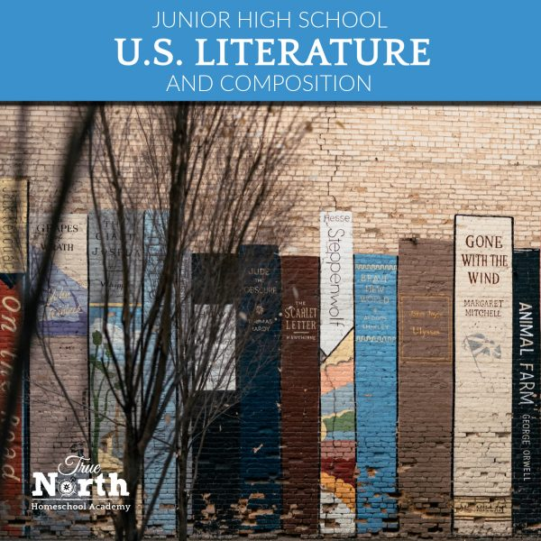 AMerican Literature and composition class online