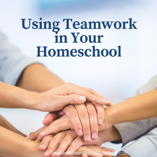 Using Teamwork in Your Homeschool
