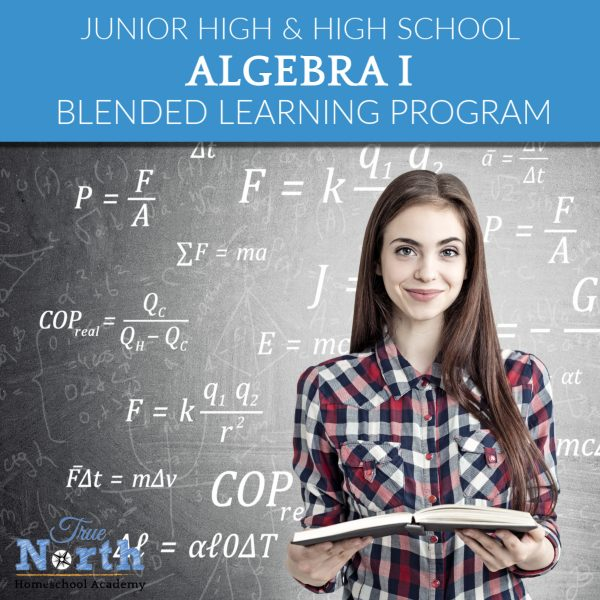 Online Algebra Program directed by a teacher