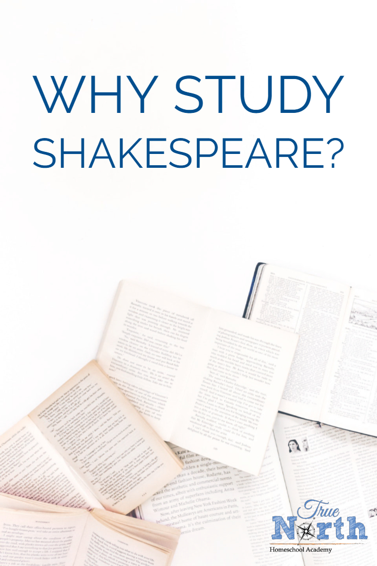 Do you teach Shakespeare in your homeschool? Over on the blog, we have a guest post all about why you should teach Shakespeare, as well as some tips on making it easier and even fun! Check it out!⁣ #TNHA #Shakespeare #homeschooling