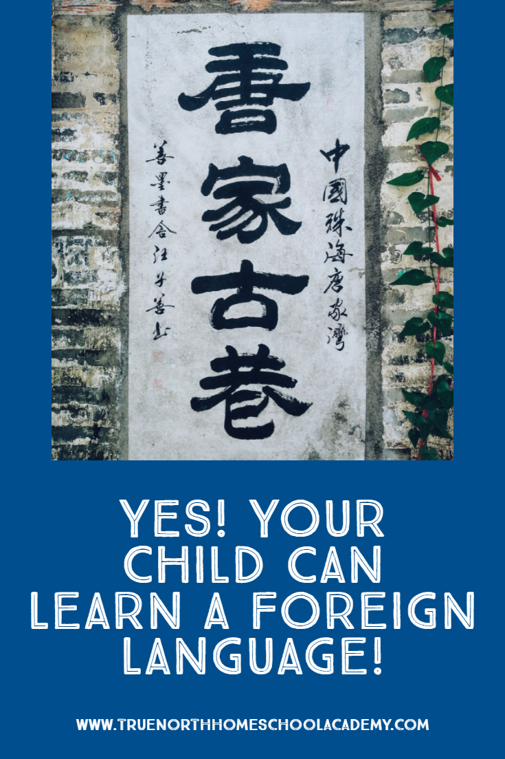 Are you concerned with your child's ability to learn a foreign language? Maybe you have a special needs student or a struggling learner, and you think there's just no way. Check out why it's possible to learn for ANY student to learn a foreign language. #TNHA #foreignlanguage #homeschool #strugglinglearner