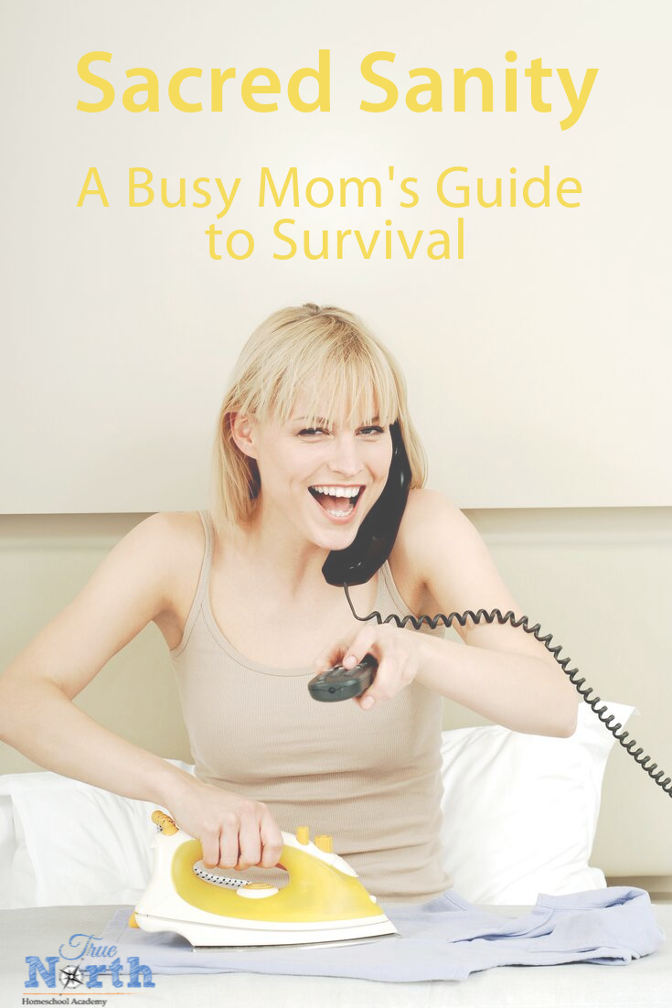 Do you often struggle to keep your sanity as a busy mom? As a homeschool mom the world often feels like chaos. Check out these tips for being maintaining sanity as a busy homeschool mom. #homeschooling #homeschoolmom #truenorthhomeschoolacademy