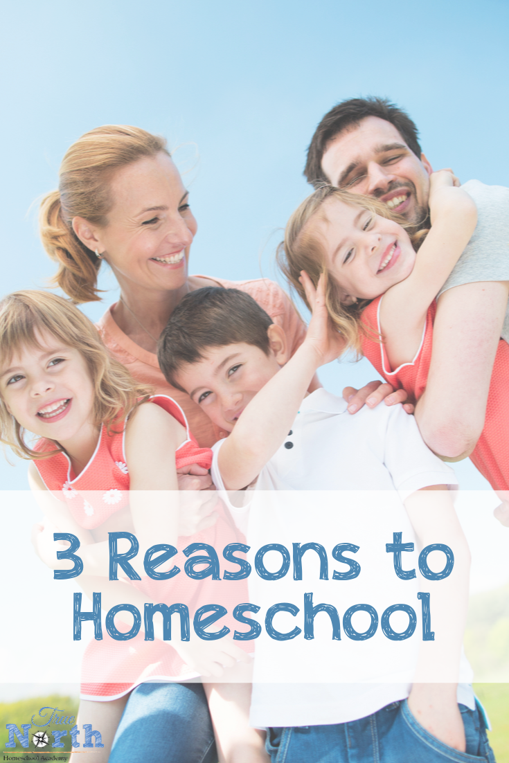Do you currently homeschool? Or maybe you are considering it. Check out the three reasons why we homeschool. Are your reasons the same? Do you have anything you would add? #homeschooling #TrueNorthHomeschoolAcademy #whywehomeschool