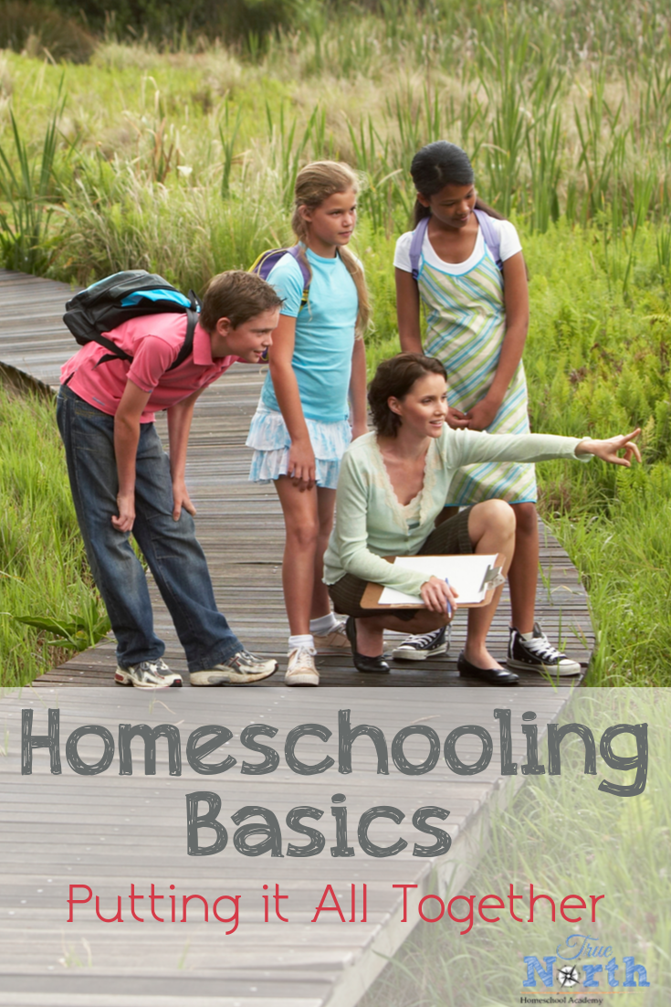 Are you wondering about homeschooling basics? Maybe you are thinking about homeschooling but you just need a solid plan. Check out this post and figure out how to put all your homeschooling information to work for you. #TrueNorthHomeschoolAcademy #homeschool #newhomeschooler #onlinehomeschool