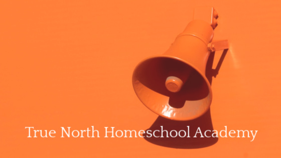 An orange megaphone on an orange background depicts how communication is key to success.