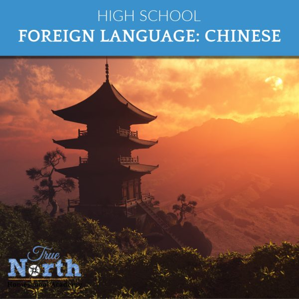 High School Level Foreign Language Studies in Chinese