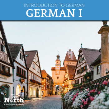 Online Live Classes in German - an introduction to the German language through online live classes