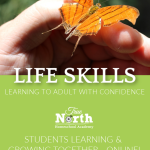 Life skills: Adulting with Confidence - Full Year Course This is a full-year, online, live class that will get your teens primed and ready for the next phase of life- meets weekly. The 8+ sections of this one year course are centered on three broad topics: Making the most of your life, transitions and preparing for your first job. Students will interact with the teacher and other students online to complete these life skills units.