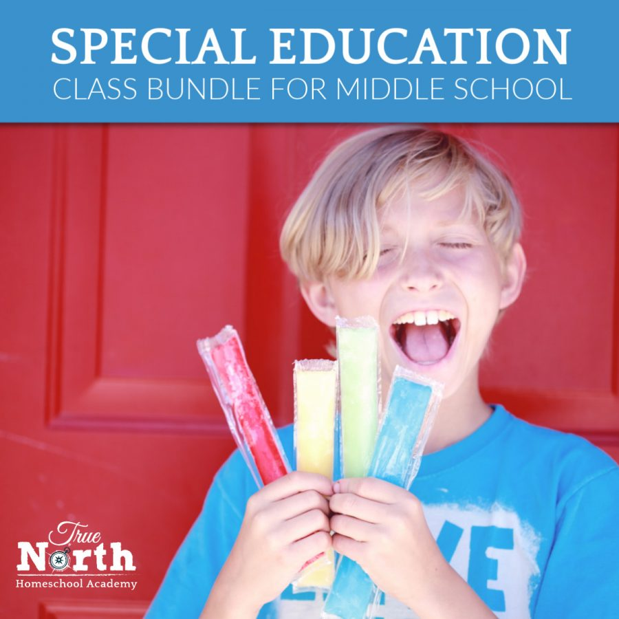 Online live classes for middle school students of True North Homeschool Academy - special needs student with colorful popcicles