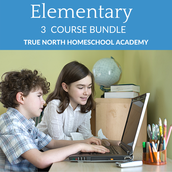 Elementary Three Course Bundle