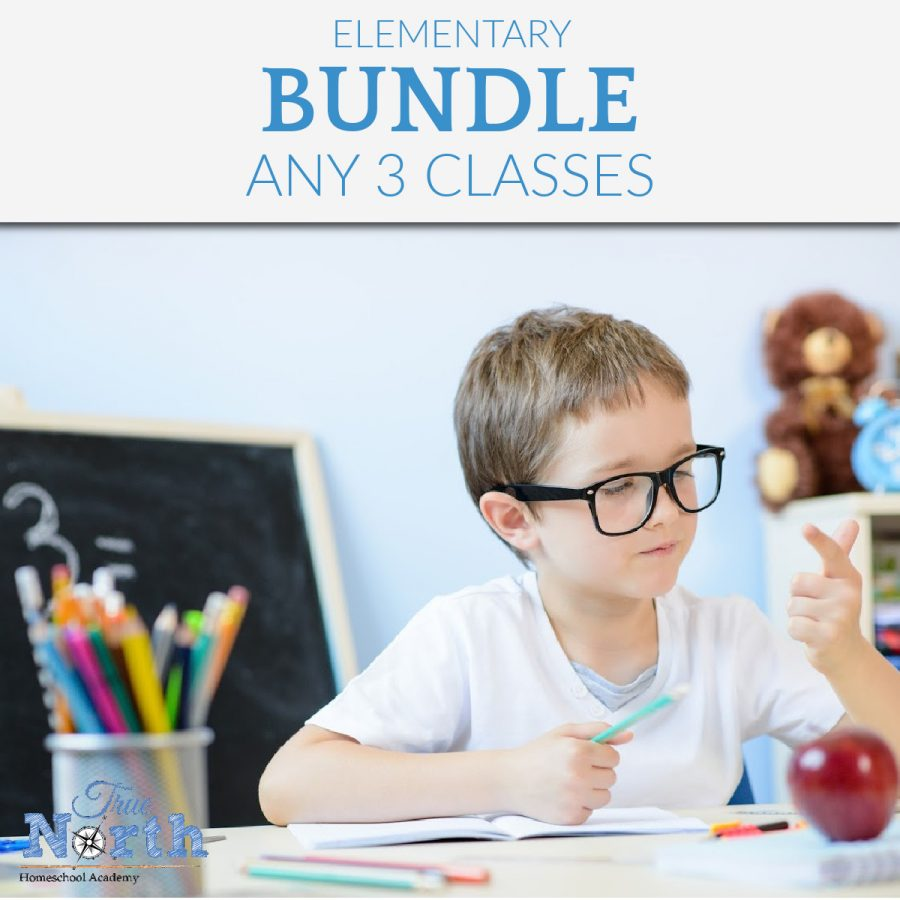 TNHA Elementary High Bundle of Three Classes Updated for 2021-2022 school year