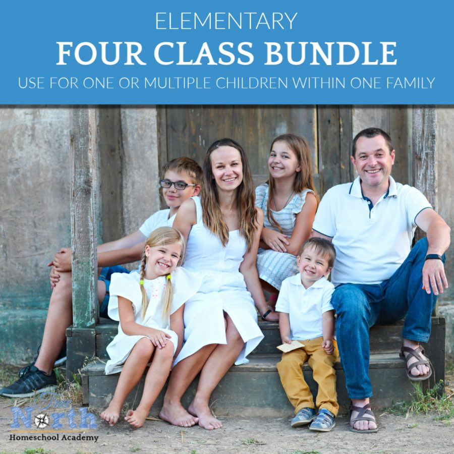 Bundle of Four Elementary Classes for Your Homeschool Family Choose from Elementary Online Classes