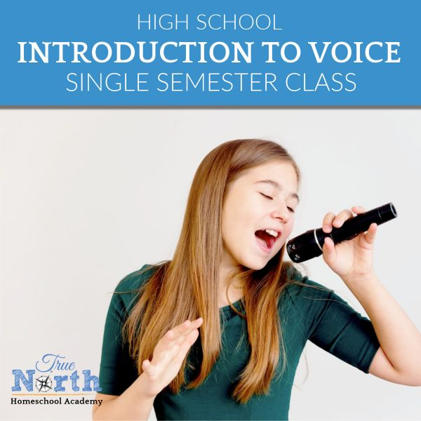 Introduction to Voice