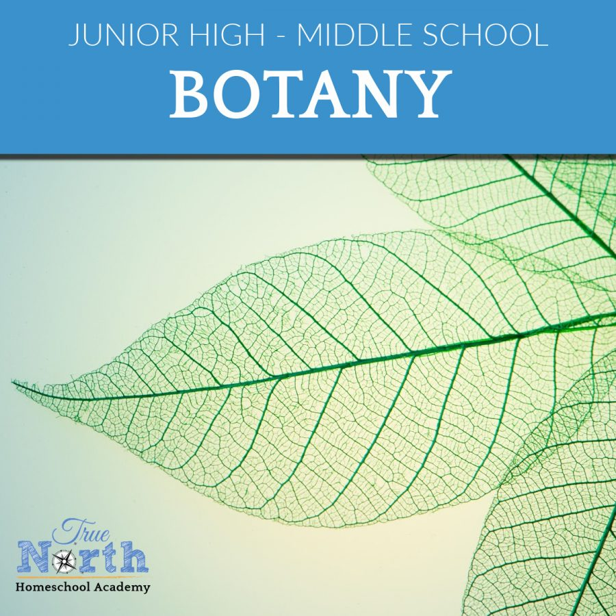 TNHA Homeschool class online Science for middles school - botany