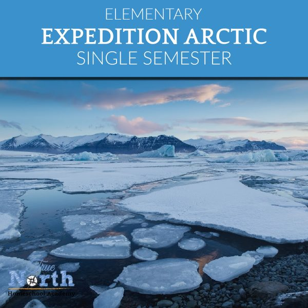 Expedition Arctic