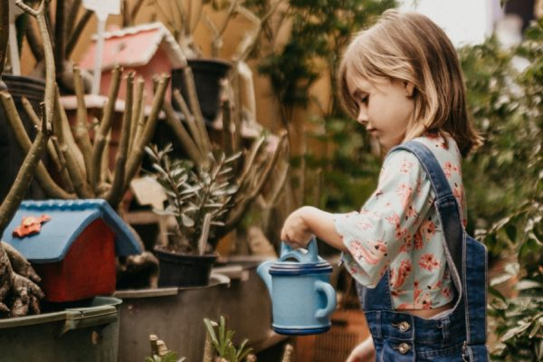 there has never been a better time to homeschool! We have so many choices and opportunities that we can involve our kids in each year. We can avoid decision fatigue when creating a simple plan that focuses on curricula and activities that fit within our educational philosophy. Child waters plants outdoors.